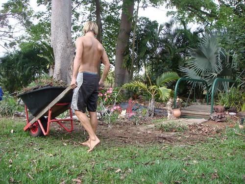 The Gardener. Humpty Doo, Darwin, Australia.