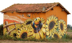 Sunflowers and Bees (Annie in Beziers) Tags: art field mud artistic painted creative huts vineyards sunflowers vignes trompe hrault honeybees serignan loeil vignerons annieinbziers