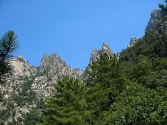 EDans la descente depuis le col 850 m: les pointes de Curiccia et la Spusata