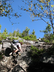 Scrambling up Photo