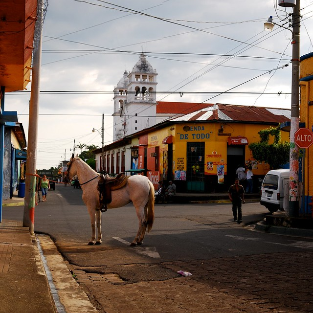 juayua horse.jpg