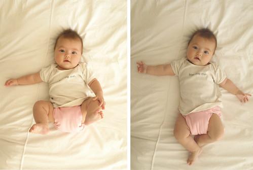 satchi 5 months!
