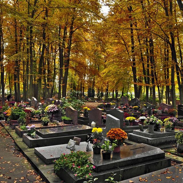Automne au cimetière paysager de Clamart (6887)