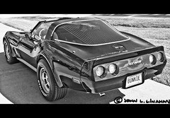 Last of the C3's (Jobe Roco) Tags: blackandwhite black chevrolet photoshop scott 1982 nikon parkinglot louisiana framed tag vanity licenseplate chevy cropped corvette carshow vette 82 personalized c3 1324 tamron18200mm bunkie d80 cajunharleydavidson cmwdbw