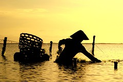 budidaya (Farl) Tags: bali woman seaweed industry beach silhouette sunrise indonesia coast bravo commerce farming harvest collection farmer lowtide nets coolest cottonii carrageenan mariculture magicdonkey geger sacol bratanesque eucheumacotttonii budidaya