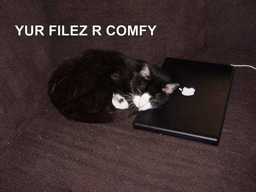 YUR FILEZ R COMFY