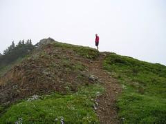 Trail Traveller