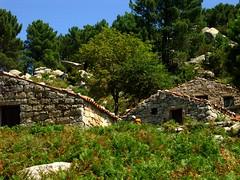 Au coeur des bergeries de Bitalza