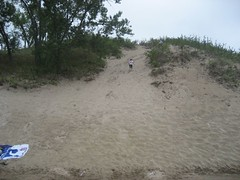 Highest dune at Sandbanks