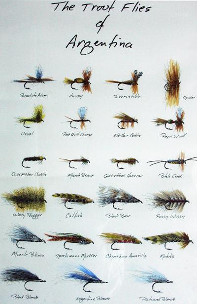 Argentine Flies.jpg