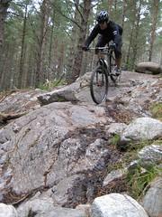 Dave: Wolftrax - Laggan Scotland