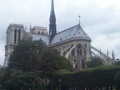Notre-Dame amongst the trees
