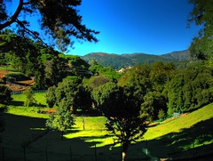Landscape (klausthebest) Tags: italy panorama tree alberi landscape genoa genova valley paesaggio italians vallata voltri wonderworld supershot 10faves aplusphoto holidaysvacanzeurlaub superbmasterpiece naturewatcher theperfectphotographer villaduchessadigalliera