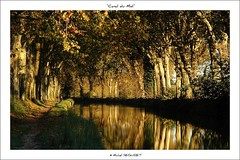 Canal du Midi prs de Bziers (Michel Seguret) Tags: trees france reflection verde green nature water landscape fun canal agua nikon aqua eau wasser royal vert rivire reflet arbres sensational grn fabulous midi iq paysage atm reflexions soe shiningstar naturesbest ste etang languedocroussillon smrgsbord enjoylife hrault potofgold occitanie nikond200 inspiredbylove thinkgreen 5photosaday baumen flickrsbest kartpostal amazingcapture 25faves abigfave royalgroup diamondheart colorphotoaward crystalaward flickrdiamond francelandscapes breathtakinglybeautiful thebestofday gnneniyisi arealgem worldtrekker rubyphotographer qualitypixels flickrverte 100commentgroup vosplusbellesphotos frommylens momentdimagination flickrpopularphotographer croquenature panoramafotogrfico excelenceofphotographer artofimages atmphotography michelseguret addictedtohighquality