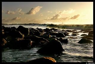 Artificial Beaches