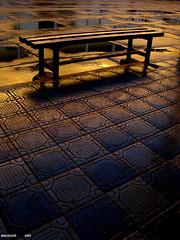 Tras una Lluvia - by Madasor