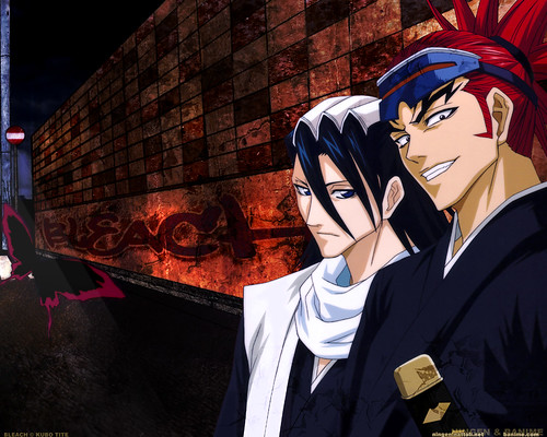 Captain and Vice Captain Bleach