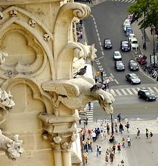 'Those small humans...' (Ignacio Lizarraga) Tags: street summer paris france catedral nikond50 notredame cathdrale verano zyber aplusphoto