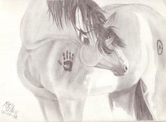 Native American Horse Drawing Indian horse drawing