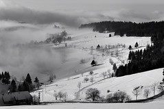 over the fog (claude05) Tags: mist fog nebel schwarzwald blackforest giesshbel thumbsupwinner stohren schauninsland