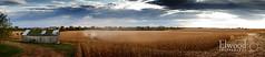 corn pano (Elwood Photo) Tags: york sunset rural canon beans globe corn nebraska farm pano grain harvest panoramic silo combine 5d elwood markii panoramics hickman elwoodphoto 5dmarkii bradsahaw