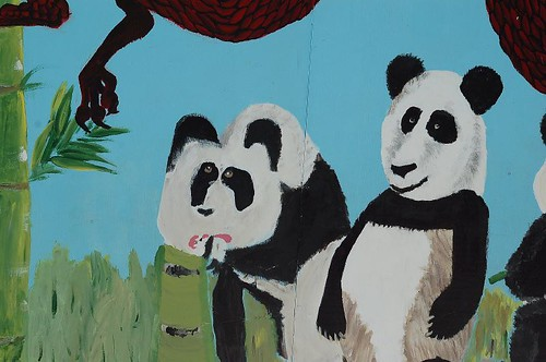 zoo june '070209
