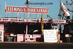 Fleming's Bait Stand