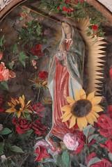 Sunflower Guadalupe (Teyacapan) Tags: mexico shrine catholic altar virgin sunflowers oaxaca guadalupe girasoles