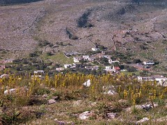Anopolis Crete (adoulianos) Tags: houses mountains village whitemountains greece crete yelow ori flouers anopoli leuka
