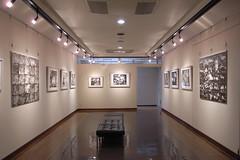 Exhibition in Sapporo 070812-0826