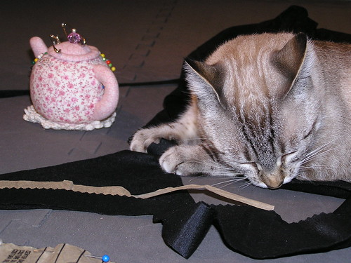 Sewing Suzy