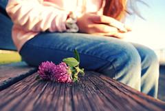 Purple (jami_lee) Tags: flower girl bench sitting dof purple random
