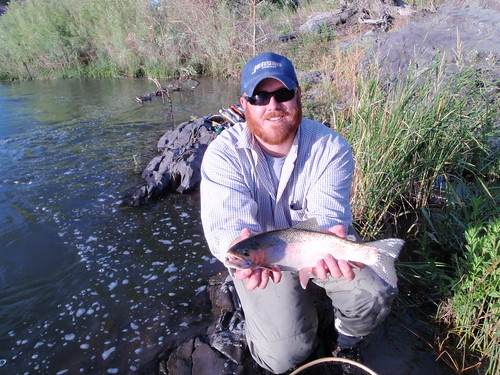 Truckee River Rainbow