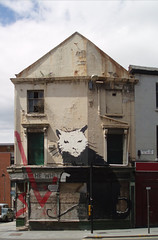 banksy rat ([DEADCITIES]) Tags: street white house liverpool berry rat banksy derelict gable