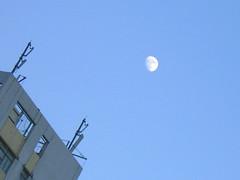 7月傍晚月亮