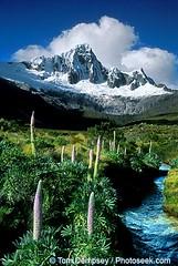 Peru Reserva de Biosfera del Huascaran World Heritage Site