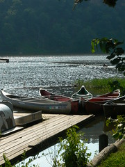 Canoe Rental on Lake Carlton - by FreeWine