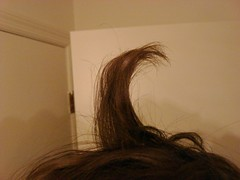 Hairection (Tylerbomb) Tags: brown self hair bathroom funny erection cowlick