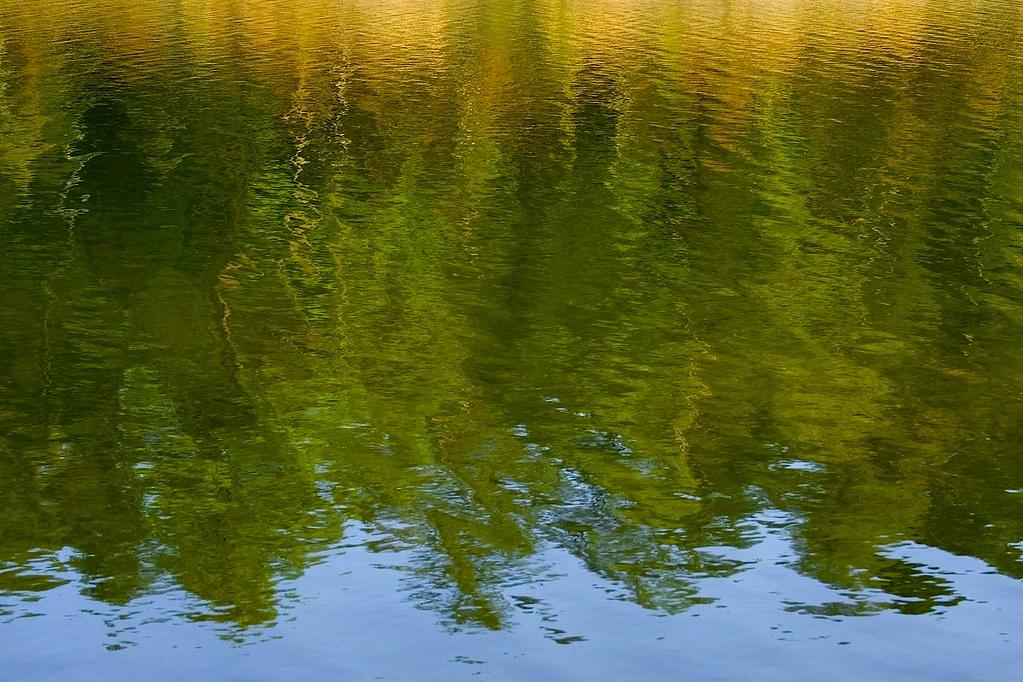 baker creek 1 ©2007 RosebudPenfold