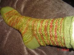 Tomato Patch Socks