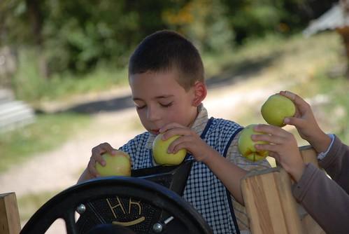 making apple juice 081