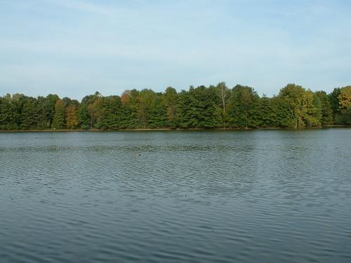 Schrock Lake