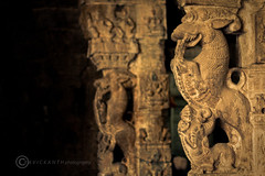 Sculptures Of kanchipuram (Ravick@nth) Tags: india art stone temple south pillar culture shiva tamilnadu kanchipuram ekambaranathar