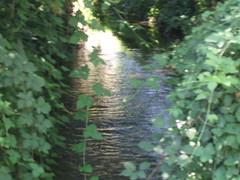 river (alex marcato) Tags: rrr