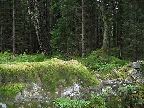Scotland 2 063
