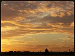 Golden sunset (Zelda Wynn) Tags: sunset sky weather clouds golden auckland avondale newlynn zeldawynnphotography rosebankpeninsular