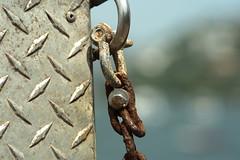 Chained (Esparta) Tags: muelle oxido chain acapulco cadena oxidado oxidized mexico:state=guerrero mexico:estado=guerrero mexico:state=gro mexico:estado=gro