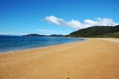 totaranui (Melissa Schneider) Tags: newzealand beach golden nationalpark bluesky abeltasman totaranui mostbeautiful goldensand fluffyquartzsand