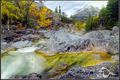 Fall Colours on Cameron Creek (cameroncreek_DSF6958.jpg) (Larsthrows) Tags: autumn canada fall leaves nationalpark alberta waterton watertonlakesnationalpark southernalberta specland mywinners cameroncreek larssteinke infinestyle larsphotography larsphotographycom lawrencesteinke