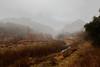 Fog Scape (segamatic) Tags: fog canon landscape eos malibu malibucreekstatepark canonef24105mmf4lisusm photofaceoffwinner pfogold beautifulworldchallenges 5dmarkii 5dmkii